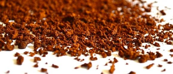 Kaffeesatz als Dünger für Pflanzen – Wissenswertes und Tipps