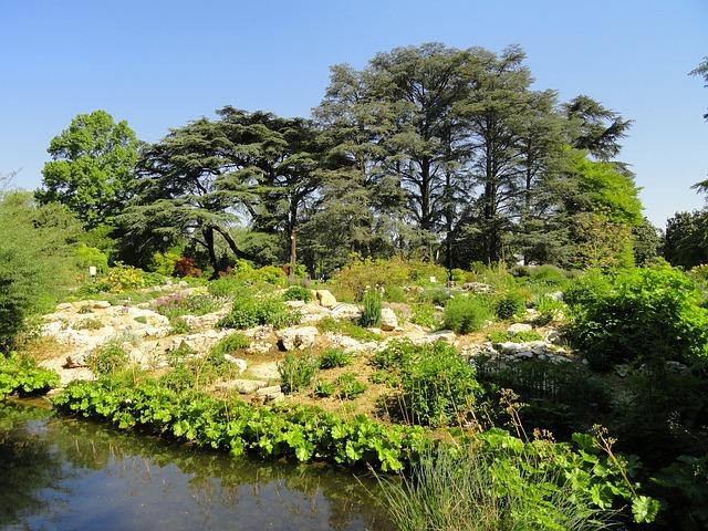 Landschaft neben Fluss
