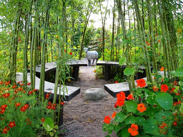 Sitzmöglichkeit zwischen Bambus