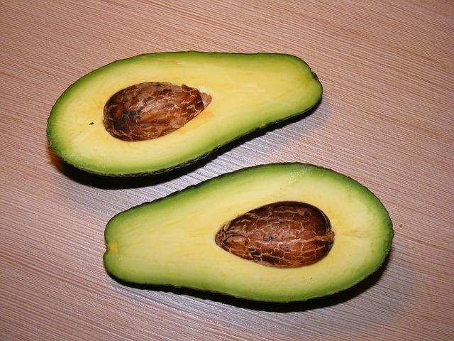 Avocado selber aus Kern züchten