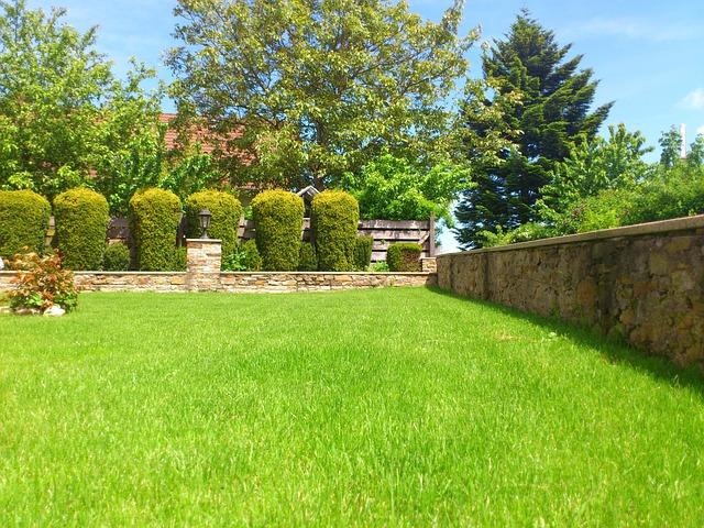 Rasenmähen – Tipps und Hinweise