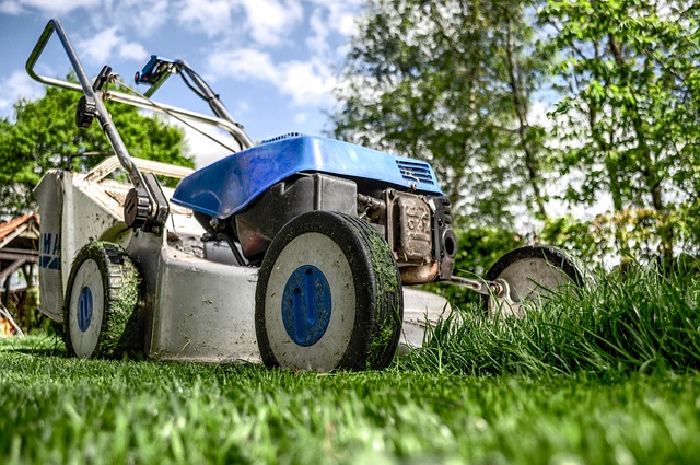 Günstige Rasenmäher: Was taugen sie wirklich?