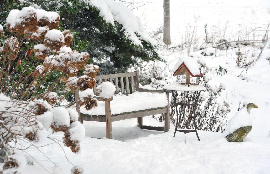 Garten Im Winter so übersteht euer garten den winter garden