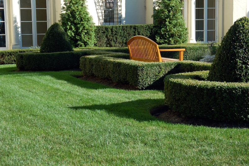 Hecken und Mauern für den Garten