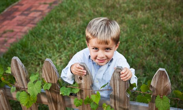 Gartenzäune als Gestaltungselemente im Garten verwenden