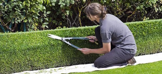 Wie viel Zeit sollte man in den Garten investieren?