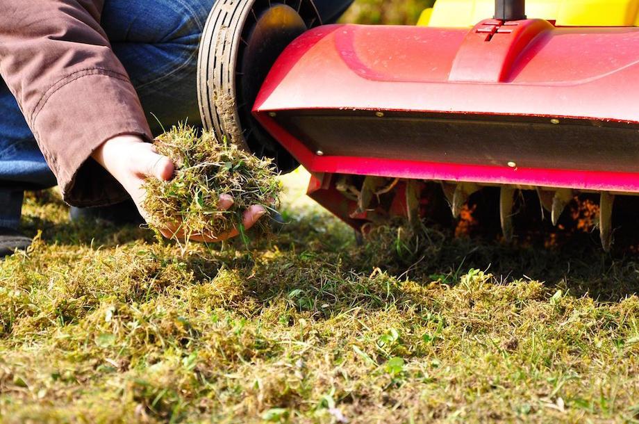 Anleitung Rasen Vertikutieren Garden Blog