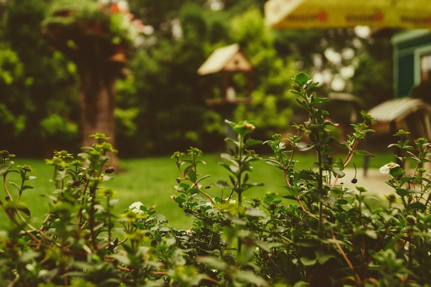 Den Garten mit schönen Holzelementen stilvoll veredeln