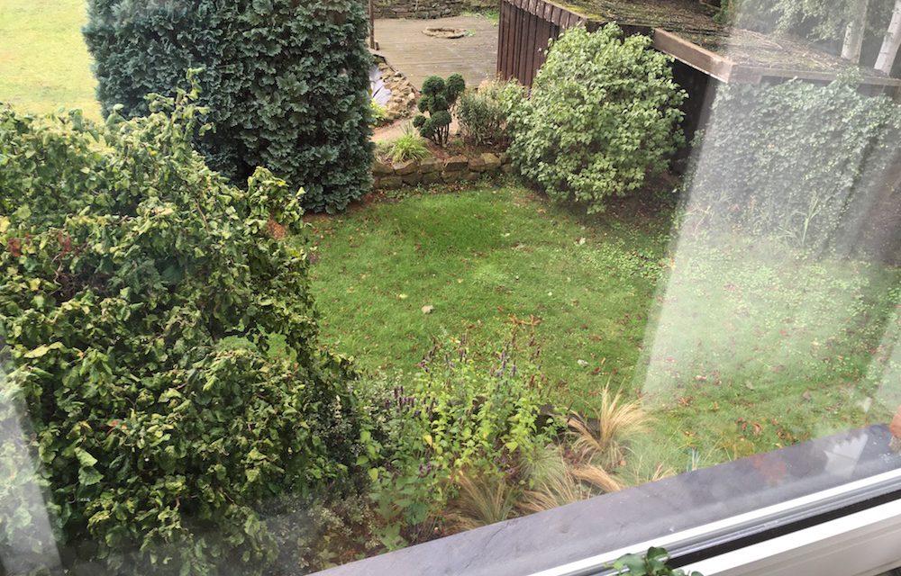 Ein Brief: Was ich meinem jüngeren Gärtner-Ich heute sagen würde