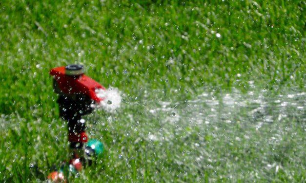 Mein Traum: Ein automatisches Bewässerungssystem
