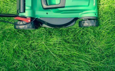 Kabel- oder Akku-Rasenmäher? – Erfahrungsbericht nach 2 Jahren