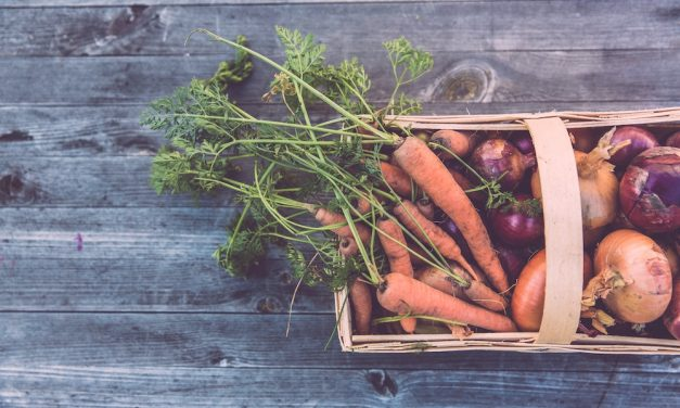 Gemüse selbst anbauen: 7 Tipps, wie sich Gemüse vermehren lässt